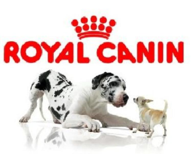royal-canin-1